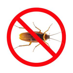 home pest control